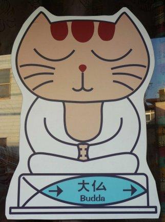 cat buddha