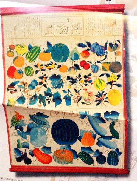 fruit and veg chart