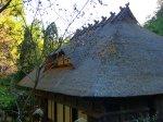 Japan Open Air Folk House Museum 09