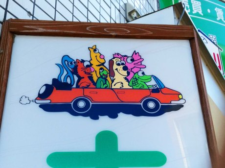zoo car